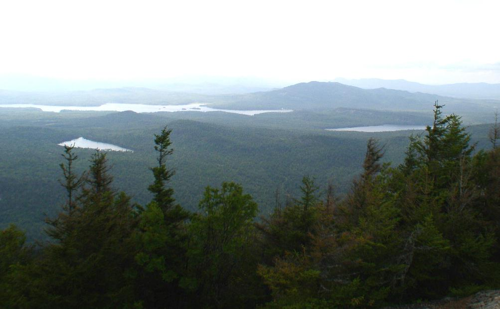 Looking east from Summit of Catamount